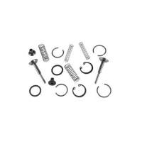 Valve Chamber Repair Kit