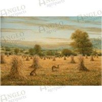 Past Times Greeting Card