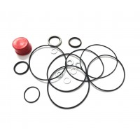 Steering Motor - Seal Kit
