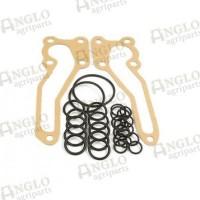 O''Ring Repair Kit - MK1 & MK2 Pumps