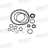 Power Steering Pump Seal Kit - (Early Kidney-Shaped Pump)