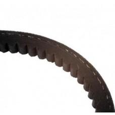 Fan Belt