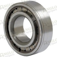 Diff Pinion Bearing