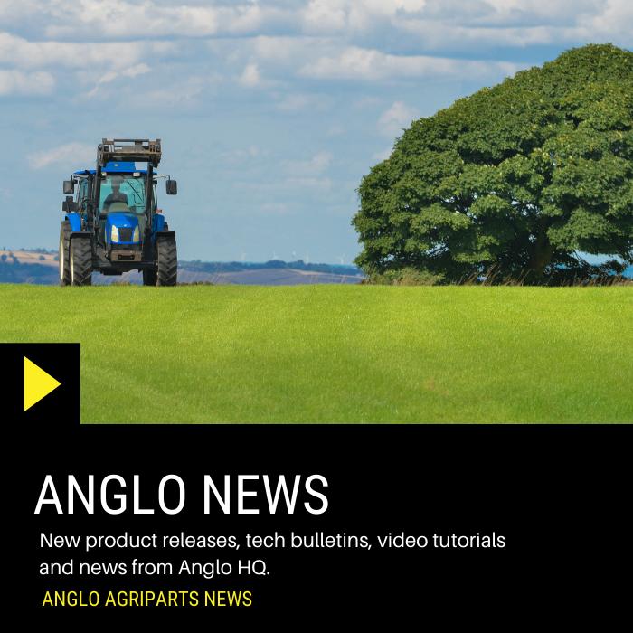 Anglo News